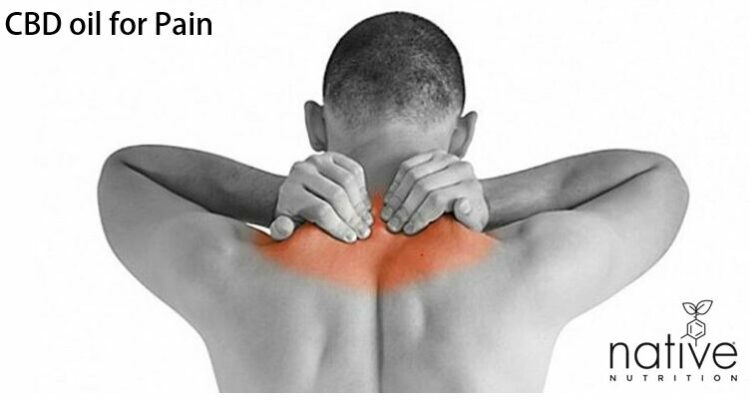 CBD oil for pain - Native Nutrition