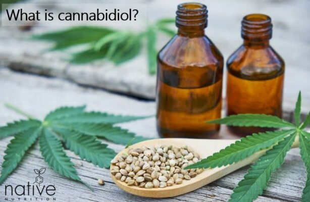 What is Cannabidiol - Native Nutrition